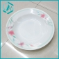 Classical Plastic Top Quality Dish with fresh print/ serving trays
