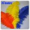 Decorative dyed ostrich feather