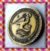 military pin. fashion lapel pin. badge