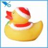 Duck,Vinyl Toy