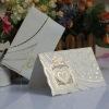 wedding invitations/wedding cards/handmade cards/Christmas Cards/wedding gift -- T167