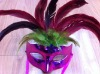 party carnival masquerade feather mask